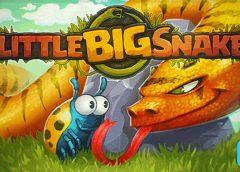 LittleBigSnake.io Game